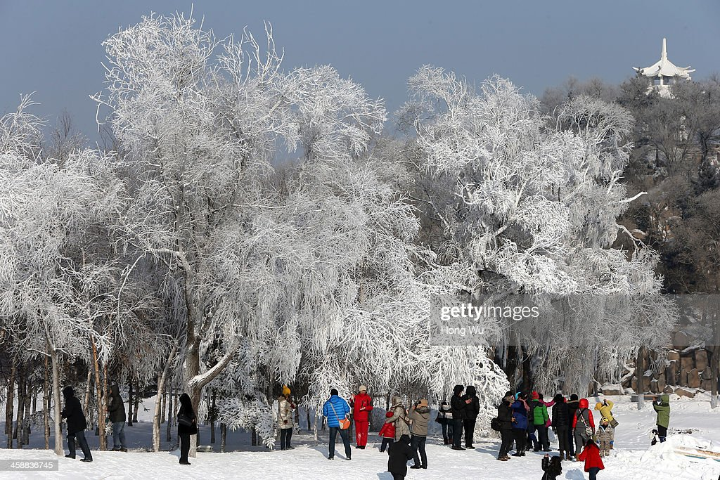 People enjoy the ice and snow at the 26th Harbin International Snow Sculpture Art Expo in Sun Island park on December 22, 2013 in Harbin, China. The Harbin International Ice and Snow Sculpture Festival is one of the largest ice and snow festivals in the world and is a popular winter destination for both Chinese and foreign visitors.