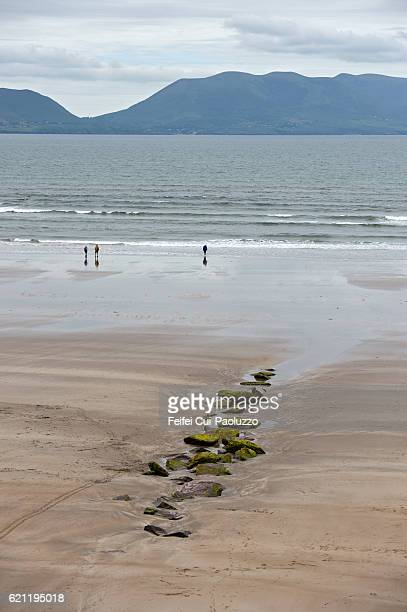 People enjoying at beach at Inch in Kerry County in Ireland