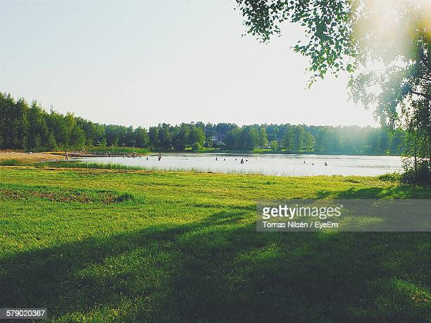 People Enjoying In Lake By Grassy Field