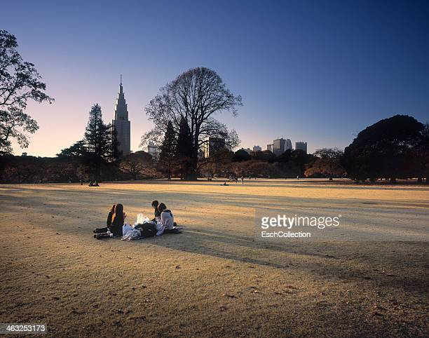 People enjoying the afternoon sunlight at a park