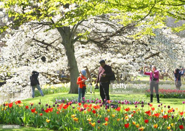 People Enjoying the Colors of the Springtime