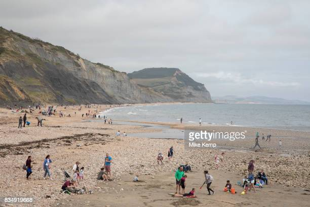 People enjoying the seaside searching for fossils on the beach at Charmouth Dorset England United Kingdom Charmouth is a village and civil parish at...