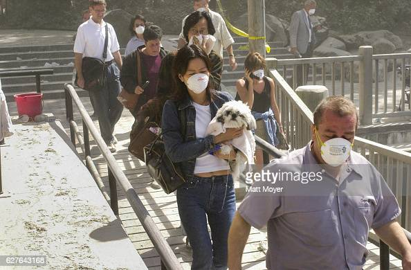 People evacuate lower Manhattan after the attack on the World Trade Center on September 11 2001