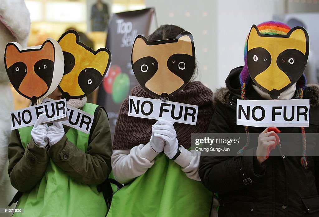 People for the Ethical Treatment of Animals protest against fur at a MyungDong shopping district on December 6 2009 in Seoul South Korea The...