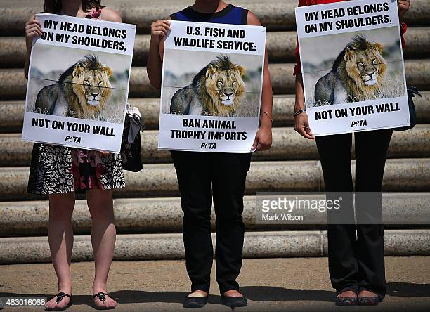 People for the Ethical Treatment of Animals protesters hold pictures of Cecil the Lion as they stand in front of the Department of Interior building...