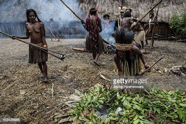 People from the Dani tribe take hot stones as they prepare to cook in a traditional way at Obia Village on August 9 2014 in Wamena Papua Indonesia...