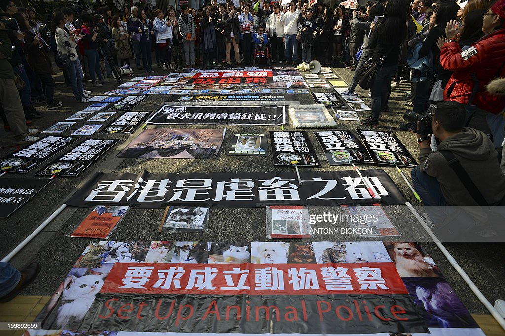 People gather to look at posters and placards laid on the ground before the beginning of a pro-animal rights rally in Hong Kong on January 13, 2013. The rally, organised on social media site Facebook, attracted around 1000 supporters who rallied for the police to take stronger action against the abuse of animals and to protect the rights of animals. AFP PHOTO / Antony DICKSON