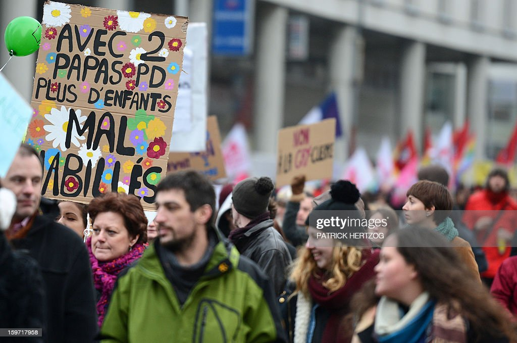 People hold banners, placards and flags during a demonstration to support same sex marriages in Strasbourg, eastern France on January 19, 2013.
