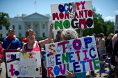 People hold signs during a demonstration against agribusiness giant Monsanto and genetically modified organisms in front of the White House in...