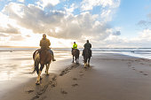 People horse riding on the beach. Three persons with horses at seaside, rear view with beautiful backlight. Sport, leisure and travel concepts