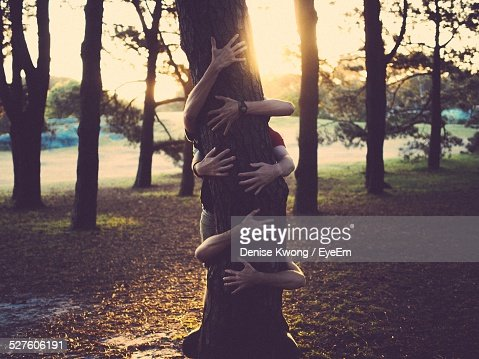 People Hugging Tree Trunk In Park