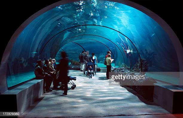 Pessoas em um túnel de água.