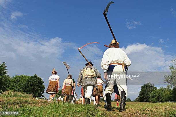 People in folk costume are pictured with scythes on their way to mow the meadow in Mala Vrbka 120 km southeast of Brno near the Slovakian border...