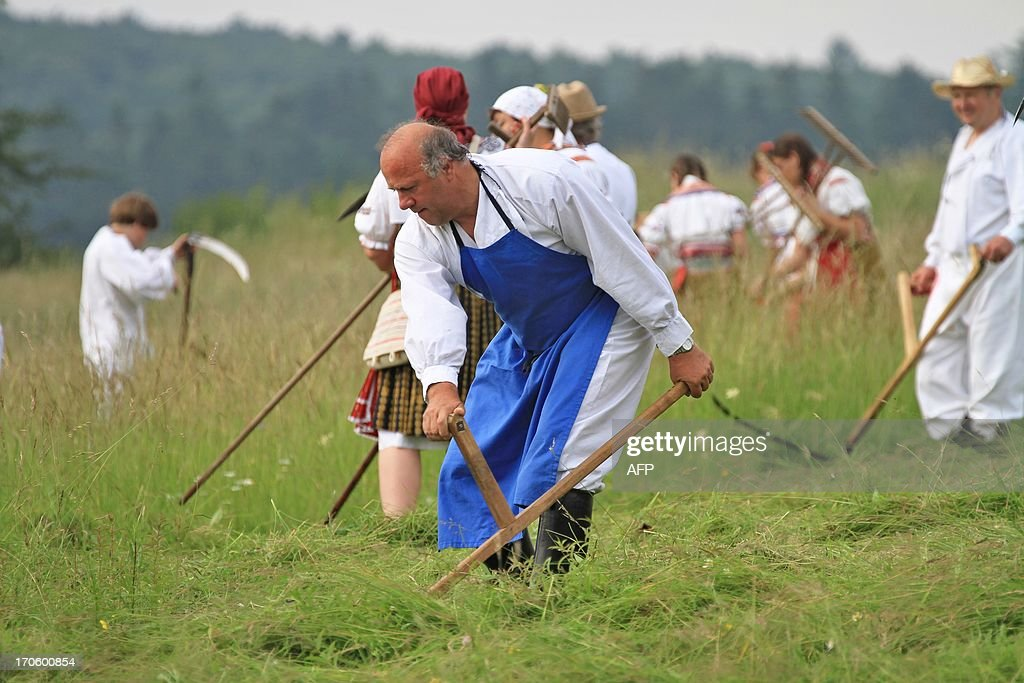 People in folk costumes are pictured at the traditional hay meadows in Mala Vrbka, 120 km south-east of Brno near the Slovakian border, Czech Republic on June 15, 2013. Around 150 people gathered to mow the meadow in Mala Vrbka. AFP PHOTO/ RADEK MICA