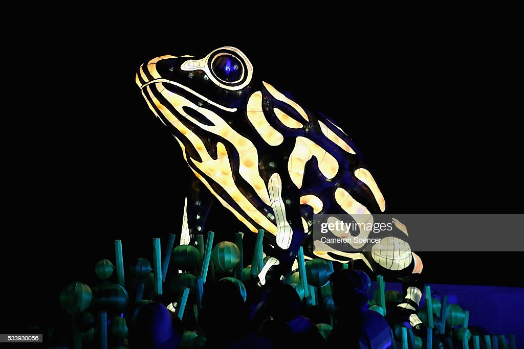 People look at a Corroboree frog light sculpture during a media preview of Vivid Sydney illuminated displays at Taronga Zoo on May 24, 2016 in Sydney, Australia. Vivid is lighting up at Taronga Zoo for the first time with ten giant animal sculptures representing critical species the zoo is committed to protecting. Held annually, Vivid Sydney is the world's largest festival of light, music and ideas running for 23 days.