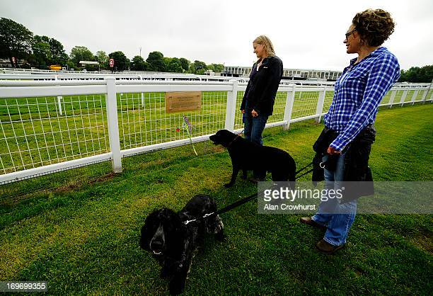 People look at a plaque on Tattenham Corner commemorating suffragette Emily Wilding Davison who threw herself under the kings horse in The Derby in...