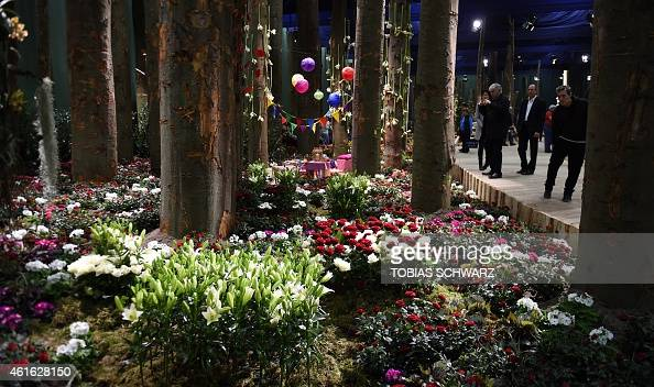 People look at an installation at the socalled flower hall during the opening day of the 'Gruene Woche' agricultural fair on January 16 2015 in...