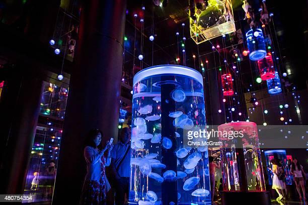 People look at the Jellyfish display at the EPSON Aqua Park Shinagawa on July 15 2015 in Tokyo Japan The EPSON Aqua Park Shinagawa previously known...