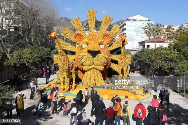 People look at the sculpture named 'Roi Lion' made with lemons and oranges during the 84th Lemon Festival on February 20 2017 in Menton southeastern...