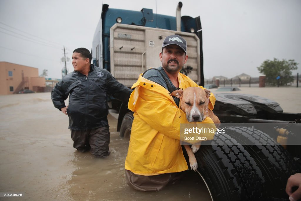 Animal Rescue During Hurricane Harvey