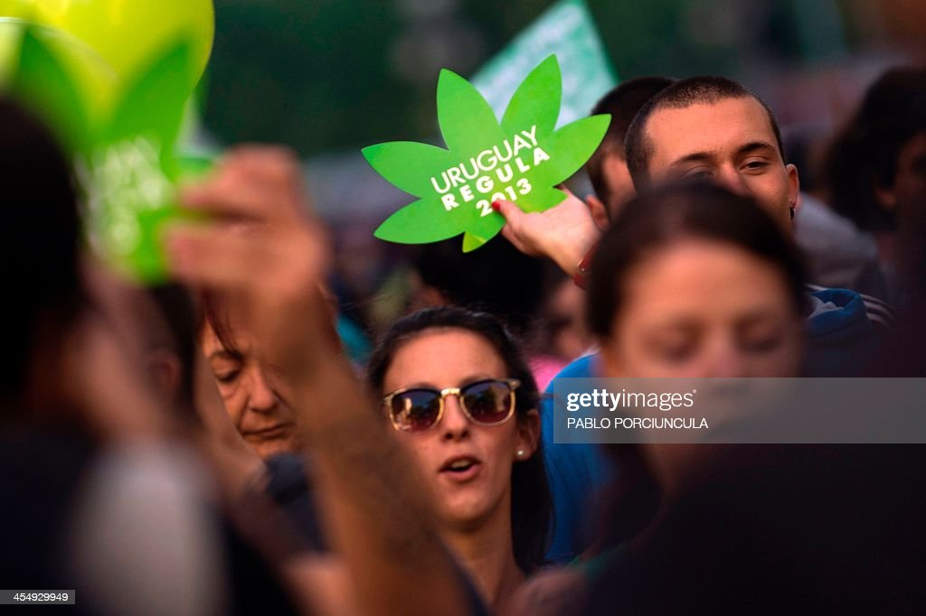 People march for the legalization of marijuana towards the Legislative Palace in Montevideo, on December 10, 2013, as the Senate discuss a law on the legalization of marijuana's cultivation and consumption. Uruguays parliament is to vote Tuesday a project that would make the country the first to legalize marijuana, an experiment that seeks to confront drug trafficking. The initiative launched by 78-year-old Uruguayan President Jose Mujica, a former revolutionary leader, would enable the production, distribution and sale of cannabis, self-cultivation and consumer clubs, all under state control. AFP PHOTO/ Pablo PORCIUNCULA