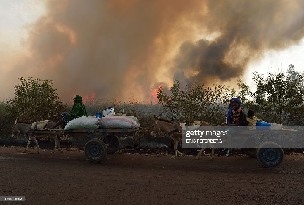 People on carts pass a sugar cane field being burnt before the sugar cane harvest, on January 23, 2013 near Niono, 370 kilometres north of Bamako. Malian soldiers have carried out multiple summary executions since the start of a French-backed offensive against Islamist extremists, a rights group charged on Wednesday. AFP PHOTO / ERIC FEFERBERG