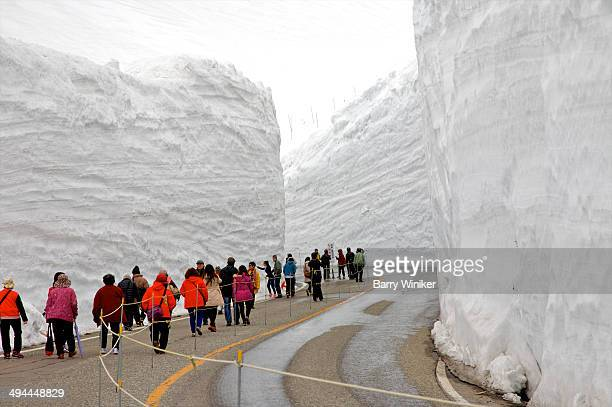 People on curving road with massive snowbanks