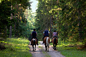 people are going on horse through forest