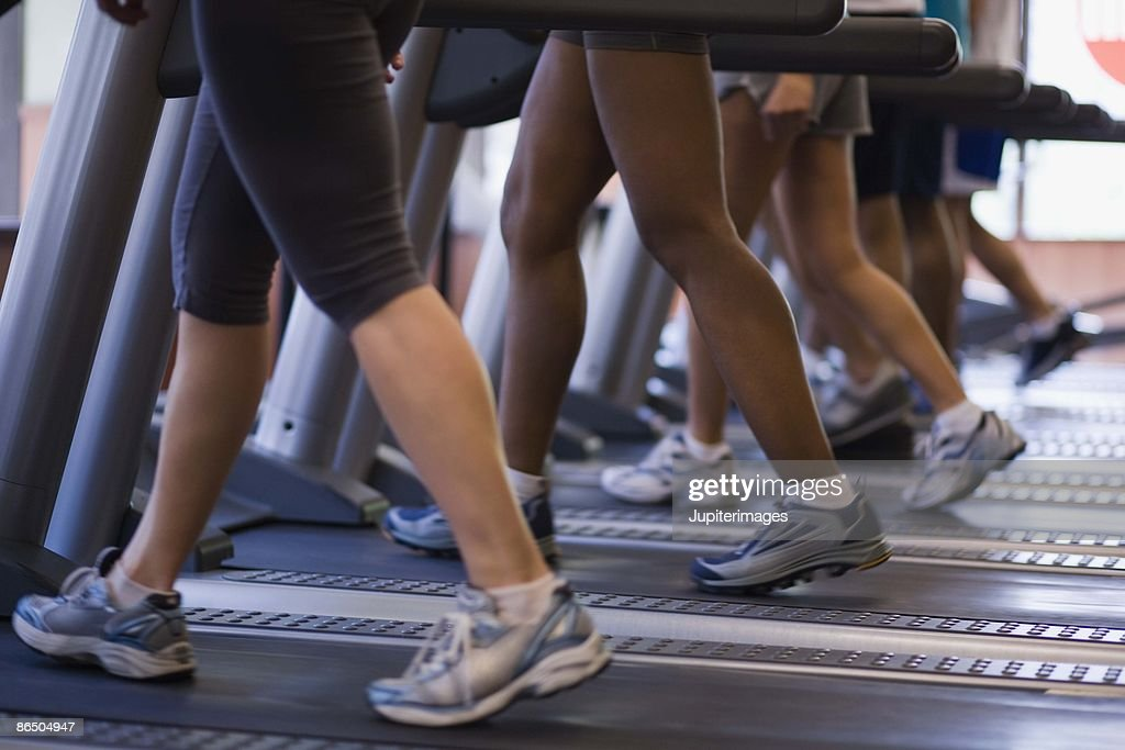 People on treadmills in gym : Stock Photo