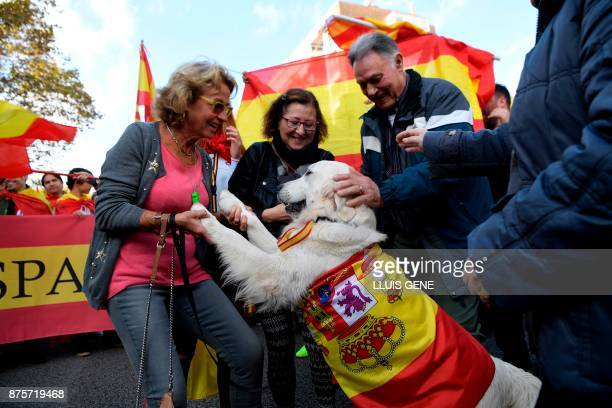 People pet a dog covered with a Spanish flag during a demonstration organised by fascist movements in Artos Square in Barcelona on November 18 2017...