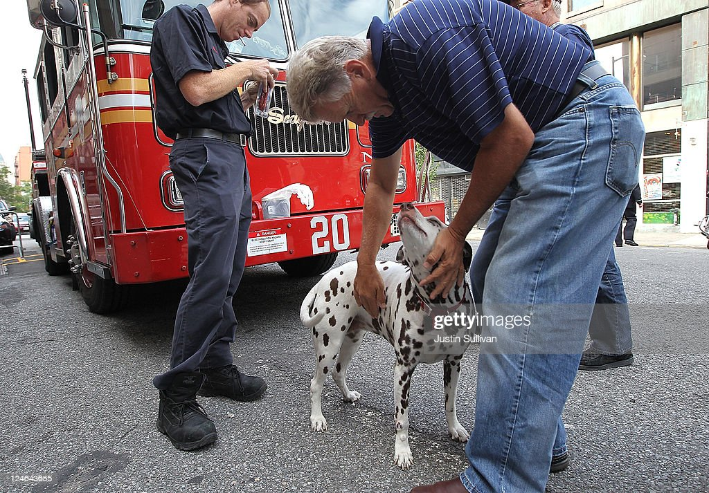 People play with a dalmation named '20' at the station of Ladder Company 20 before a ceremony to mark the tenth anniversary of the September 11 terror attacks on the World Trade Center on September 11, 2011 in New York City. New York City firefighters are commemorating the 10th anniversary of the 9/11 terrorist attacks and honoring the 343 firefighters who died in the line of duty.