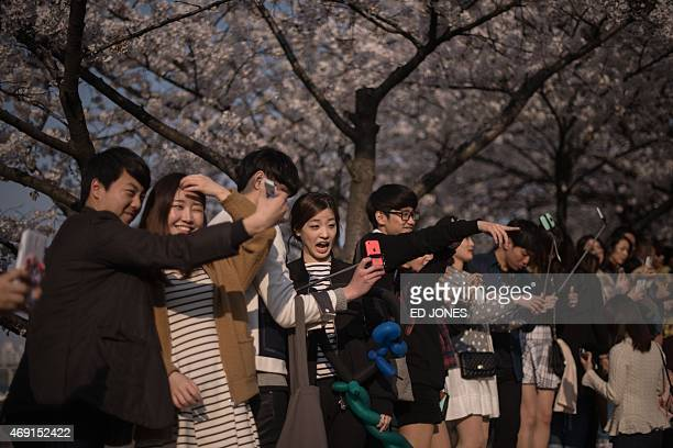 People pose for selfies before cherry blossoms in Seoul on April 10 2015 AFP PHOTO / Ed Jones