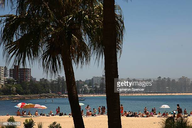 People relax at Shelly beach on November 20 2015 in Sydney Australia The East coast of Australia has has been experiencing a heatwave with...