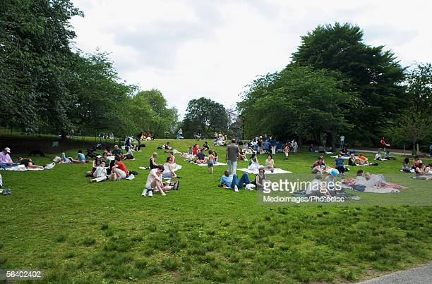 People relaxing on grass in Central Park, New York, NY, USA