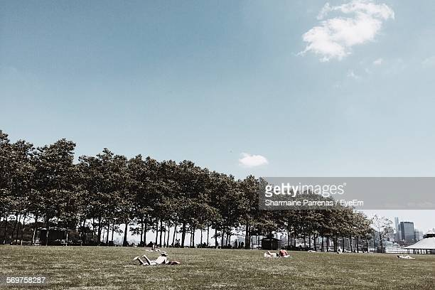 People Relaxing On Grassy Field By Trees Against Sky