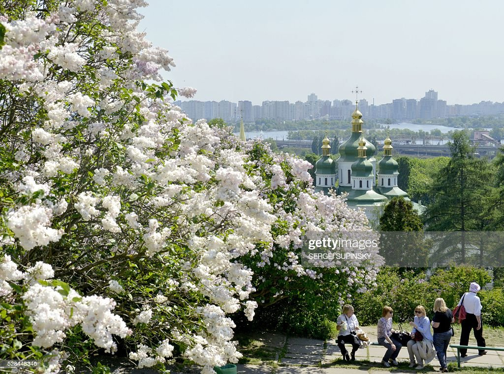 People rest among blossoming lilacs in the Botanical Garden of Kiev on May 5, 2016. / AFP / Sergei SUPINSKY