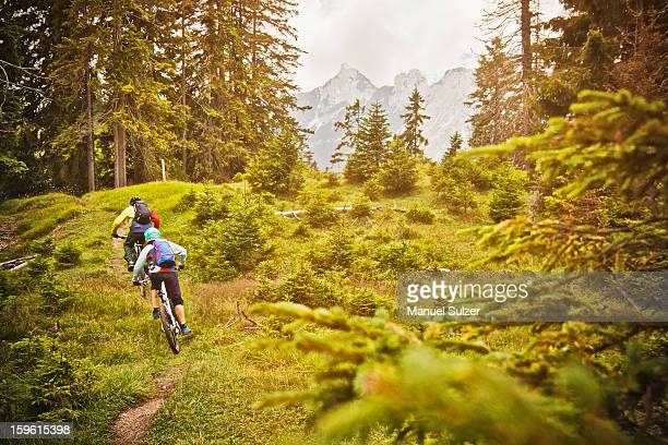 People riding bicycles on dirt path