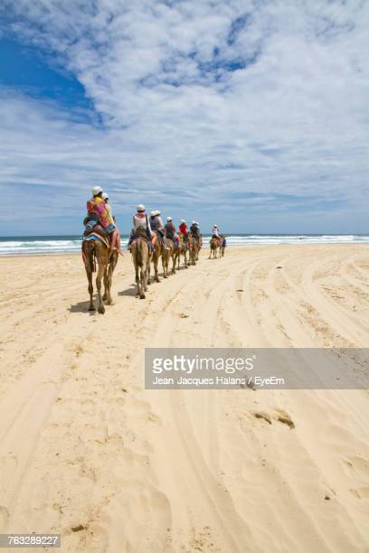 People Riding Camels On Beach