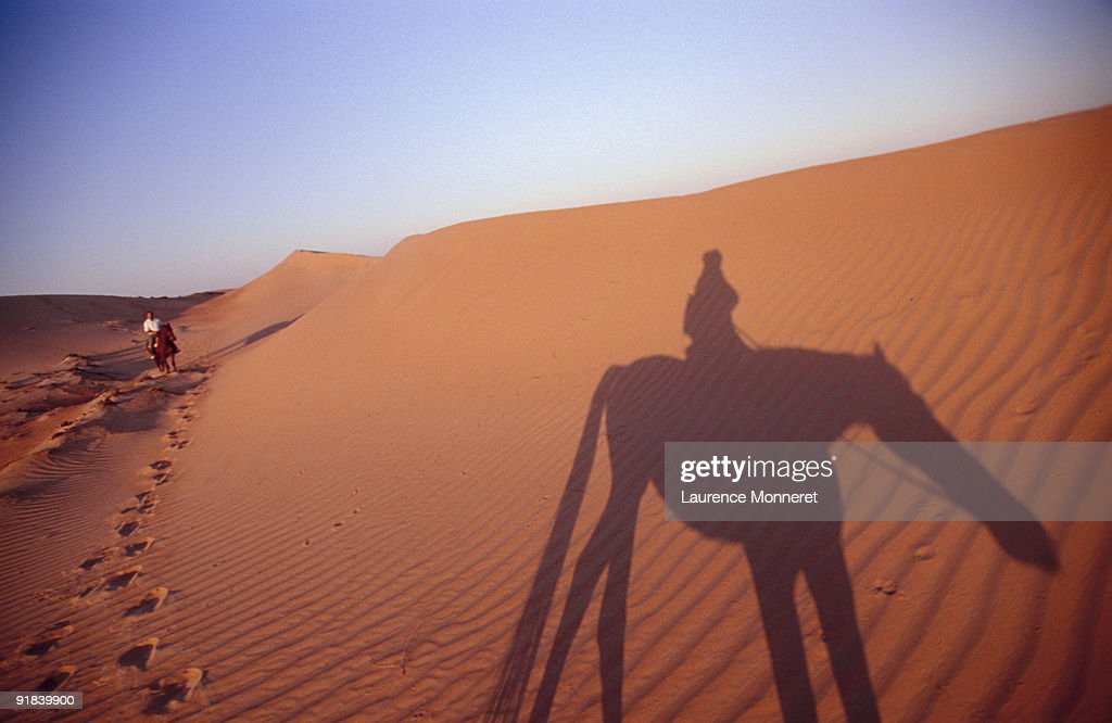 People riding horses in the desert : Stock Photo