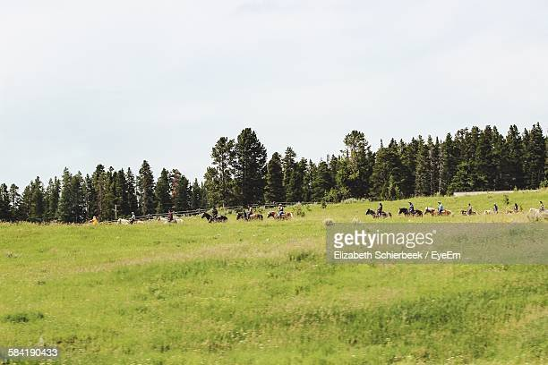 People Riding Horses On Grassy Field Against Sky