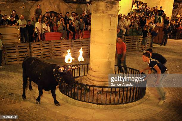 People run from a bull on fire during the The Fiesta Del Toro Embolao on August 15 2009 in the village of Cretas eastern SpainThis type of...