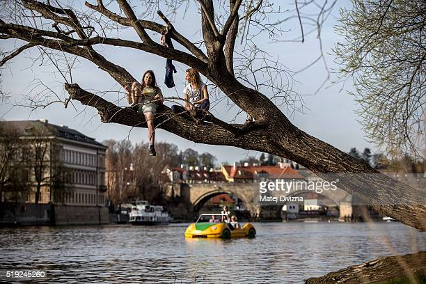 People sit and talk to each other on the branch on the bank of Vltava river during a spring sunny day on April 5 2016 in Prague Czech Republic Czech...
