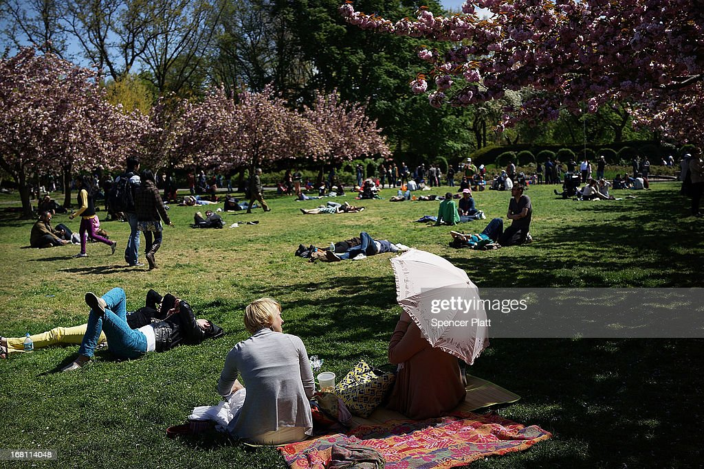 People sit under cherry blossom trees at the Brooklyn Botanical Garden on May 5, 2013 in New York City. The botanical garden, which sits on 52-acres, features numerous gardens and a conservatory. The Brooklyn Botanical Garden is famous for their cherry blossoms, which typically bloom at the end of April and are a centerpiece of the Garden's annual cherry blossom festival which attracts thousands of visitors.