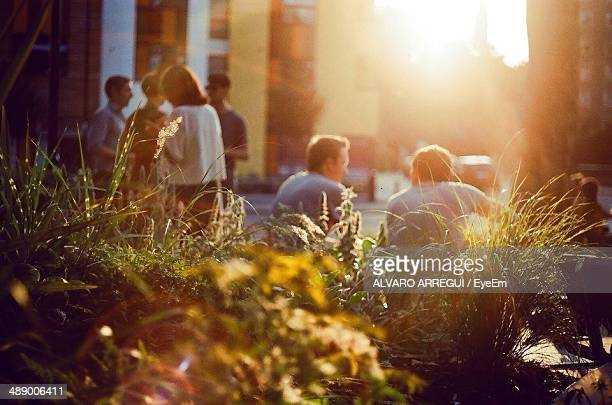 People spending leisure time in city during sunset