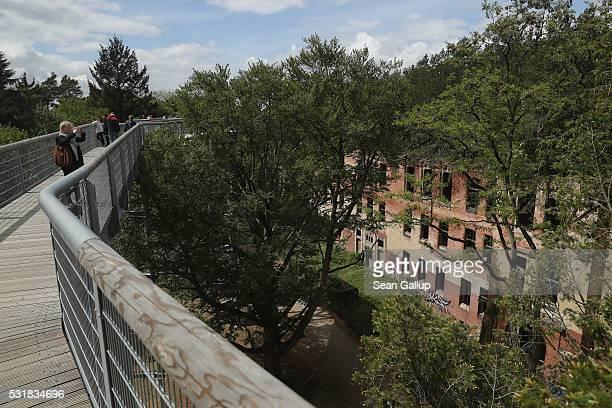 People standing on the 'Baum und Zeit' elevated platform look from treetop height down at the ruins of the Beelitzer Heilstaetten sanatorium on May...