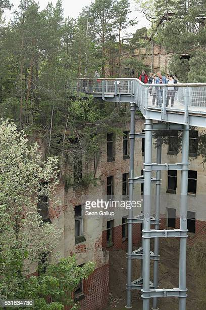 People standing on the 'Baum und Zeit' elevated platform look from treetop height down at the ruins of the Beelitzer Heilstaetten sanatorium on May...