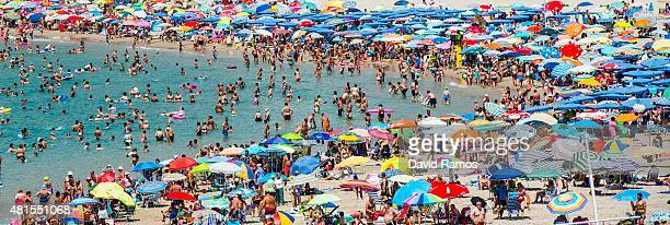 People sunbathe at Poniente Beach on July 22 2015 in Benidorm Spain Spain has set a new record for visitors with 292 million visitors in June 42%...