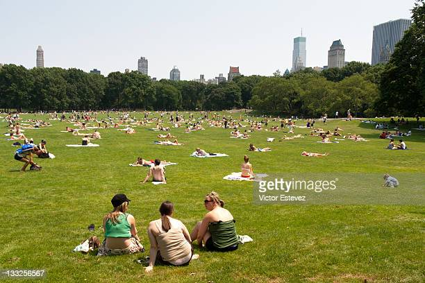 People sunbathing in Central Park