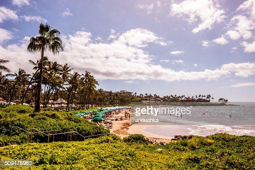 People sunbathing on Wailea Beach, Hawaii, USA