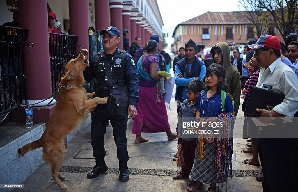 People surround a policeman with a dog in San Cristobal de las Casas, Chiapas State, Mexico on February 12, 2016. Pope Francis will arrive in Mexico on Friday, where he will visit until February 17. AFP PHOTO/Johan ORDONEZ / AFP / JOHAN ORDONEZ